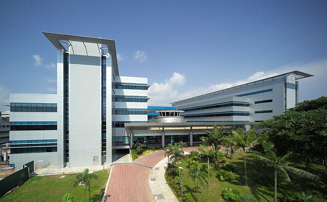 Cpg Consultants School Of Biological Sciences Ntu