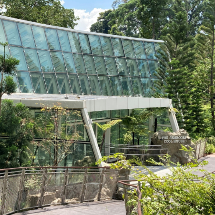 Enhanced National Orchid Garden further promotes Orchid Biodiversity Conservation